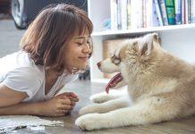femme avec son chien
